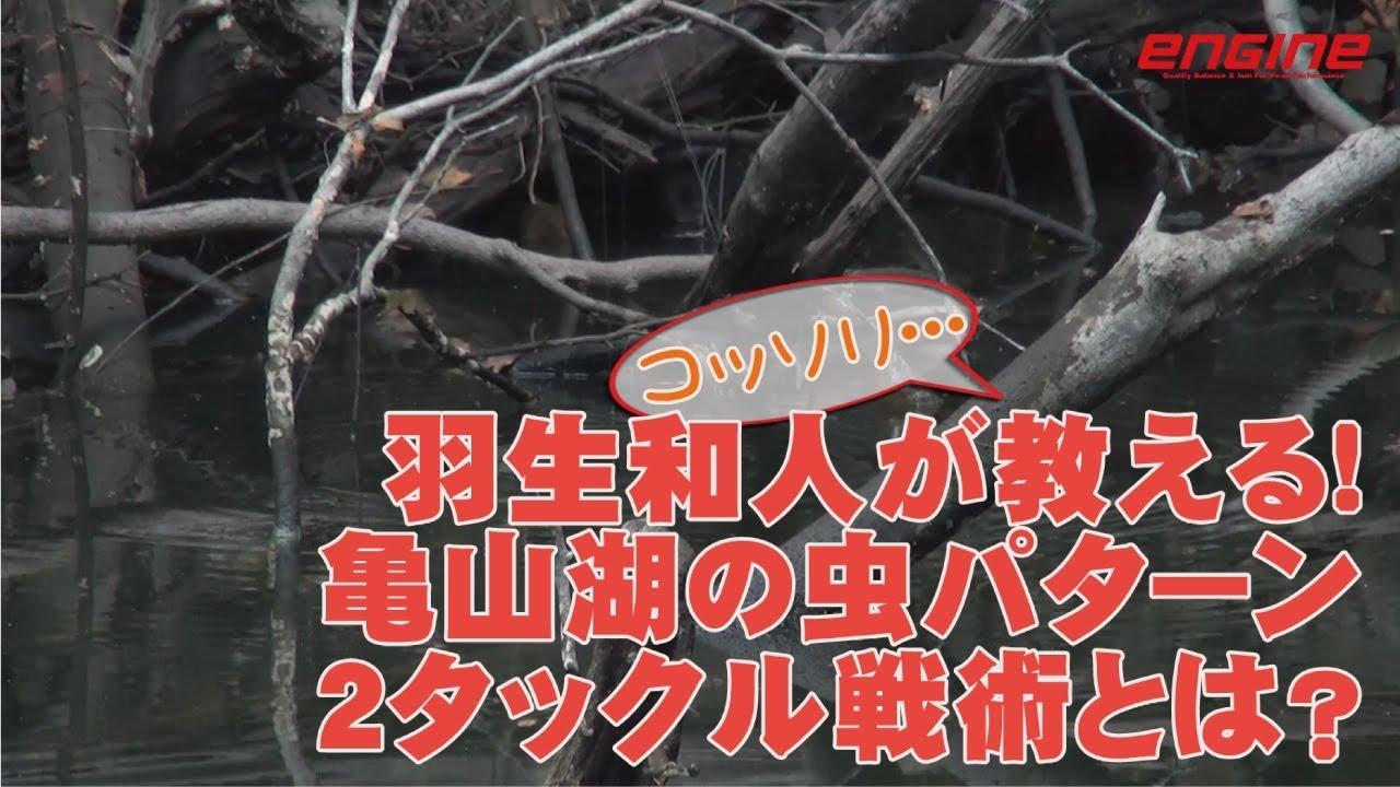 羽生和人がコッソリ教える亀山湖の虫パターン2タックル戦術